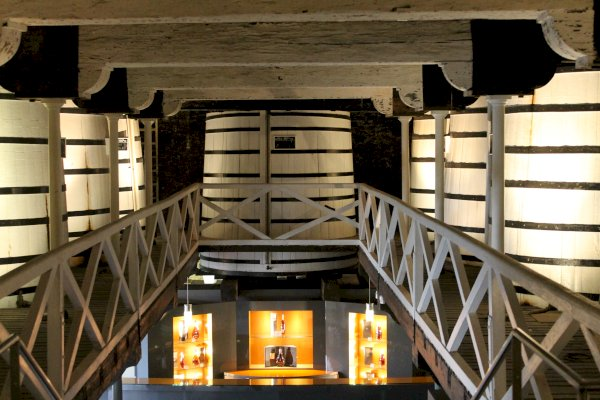 Ophorus Tours - Tours from Cognac