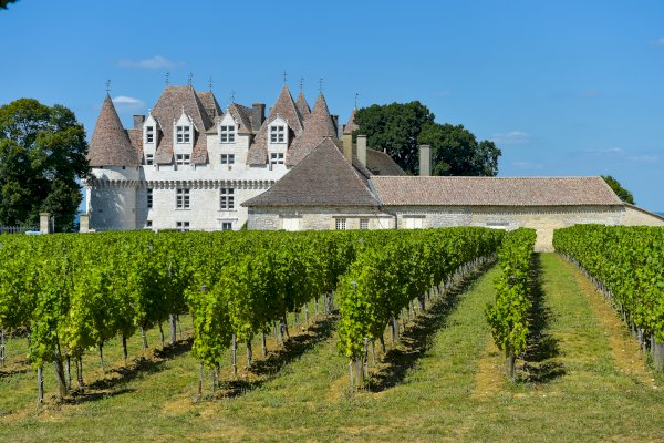 Ophorus Tours - Transfers from Bergerac