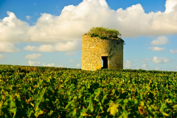 Ophorus Tours - Transfers from Pauillac