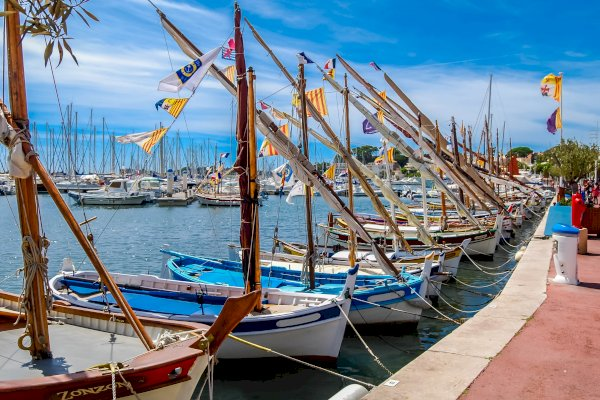 Ophorus Tours - Transfers from Bandol