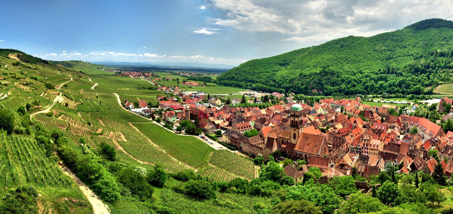 Ophorus Tours - Alsace