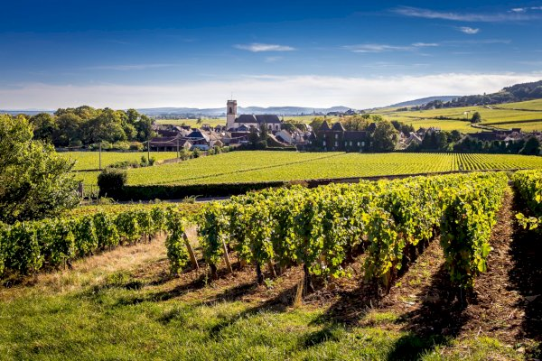 Ophorus Tours - 4 Days Burgundy Wine Tour Private Travel Package - Based in Beaune