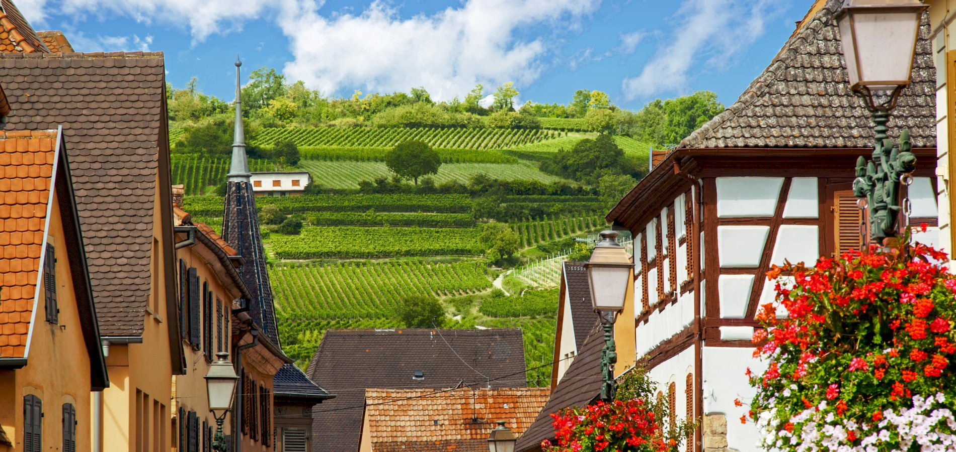 Ophorus Tours - 5 days Alsace Private Travel Package - Based in Strasbourg