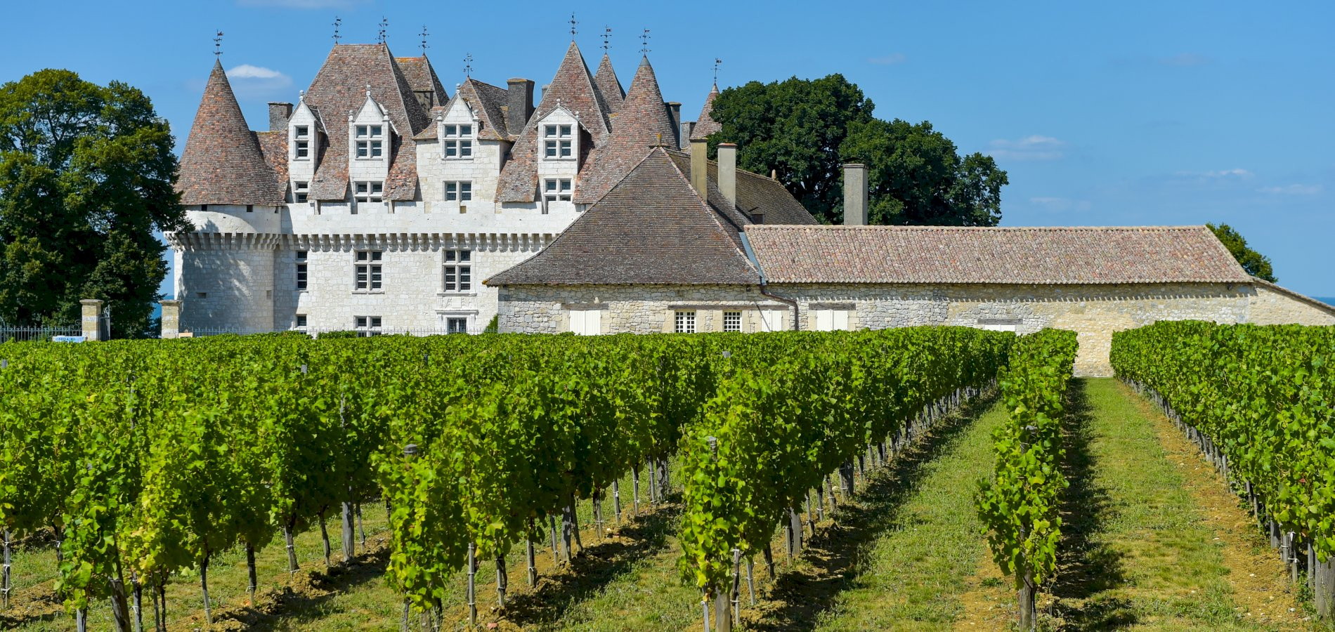 Ophorus Tours - Dordogne Wine Tour Private Day Trip From Sarlat