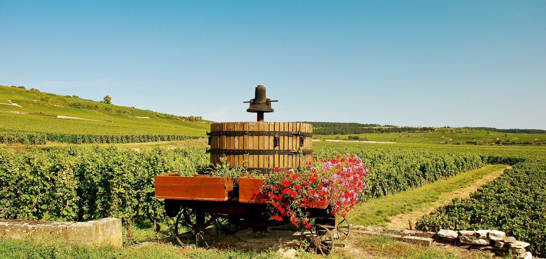 Ophorus Tours - 4 Days Burgundy Wine Tour Private Travel Package - 5* Hotel Option