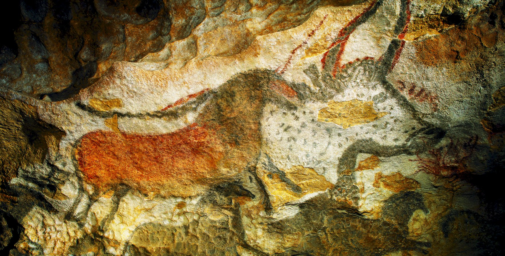 Ophorus Tours - Paleolithic Art of the Dordogne Private Day Trip from Sarlat