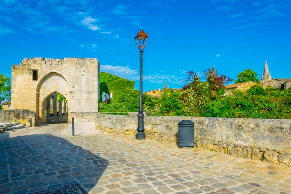 Ophorus Tours - Saint Emilion Wine Tour Private Half Day Shore Excursion From Bordeaux