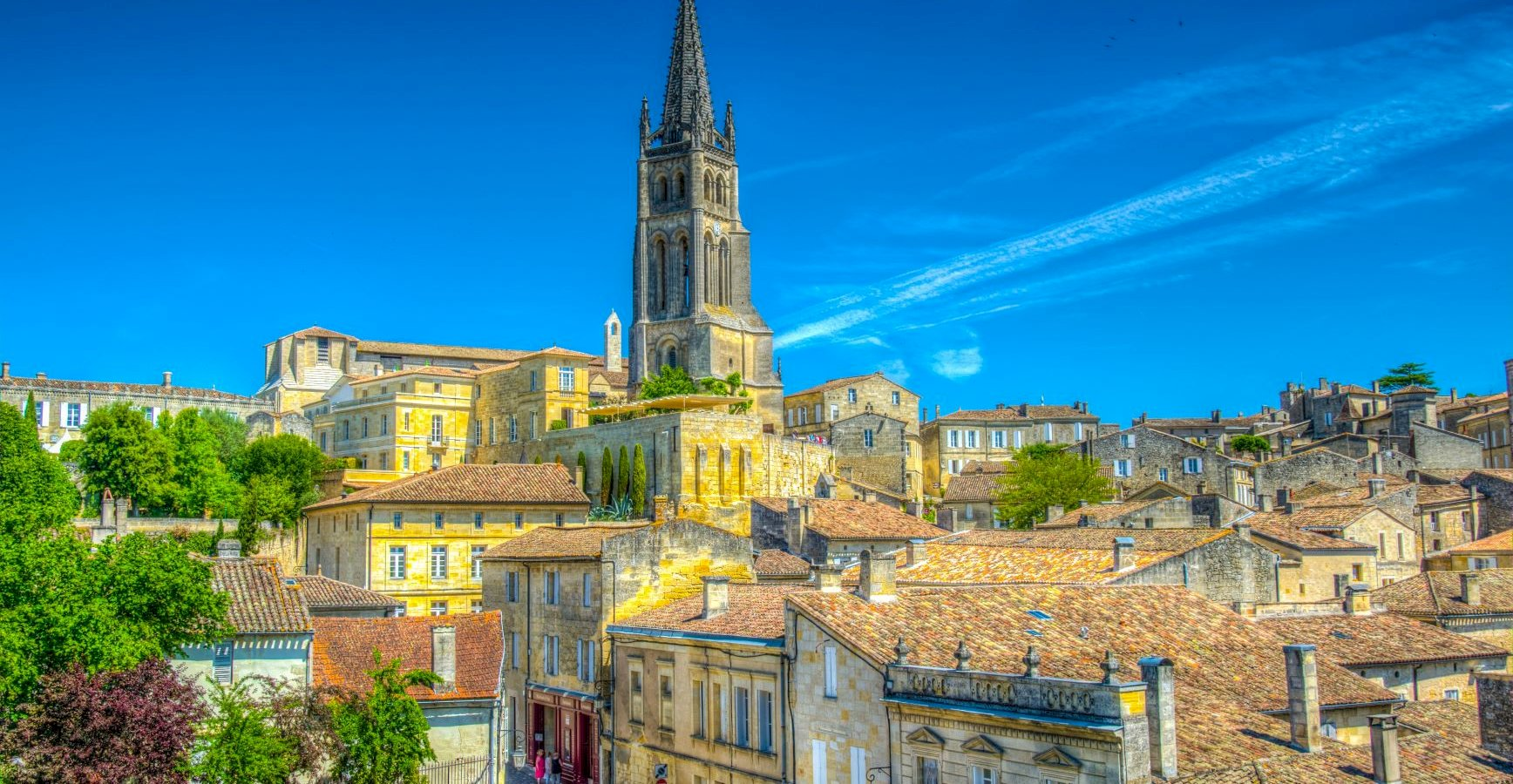 Ophorus Tours - Saint Emilion Small Group Private Guided Walking Tour with a Licensed Tour Guide