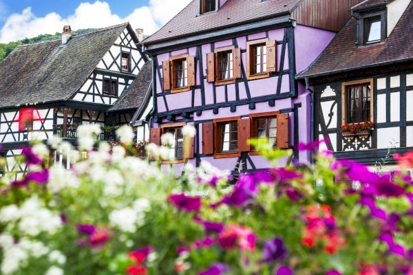 Ophorus Tours - Alsace Villages Shared Half Day Trip From Colmar