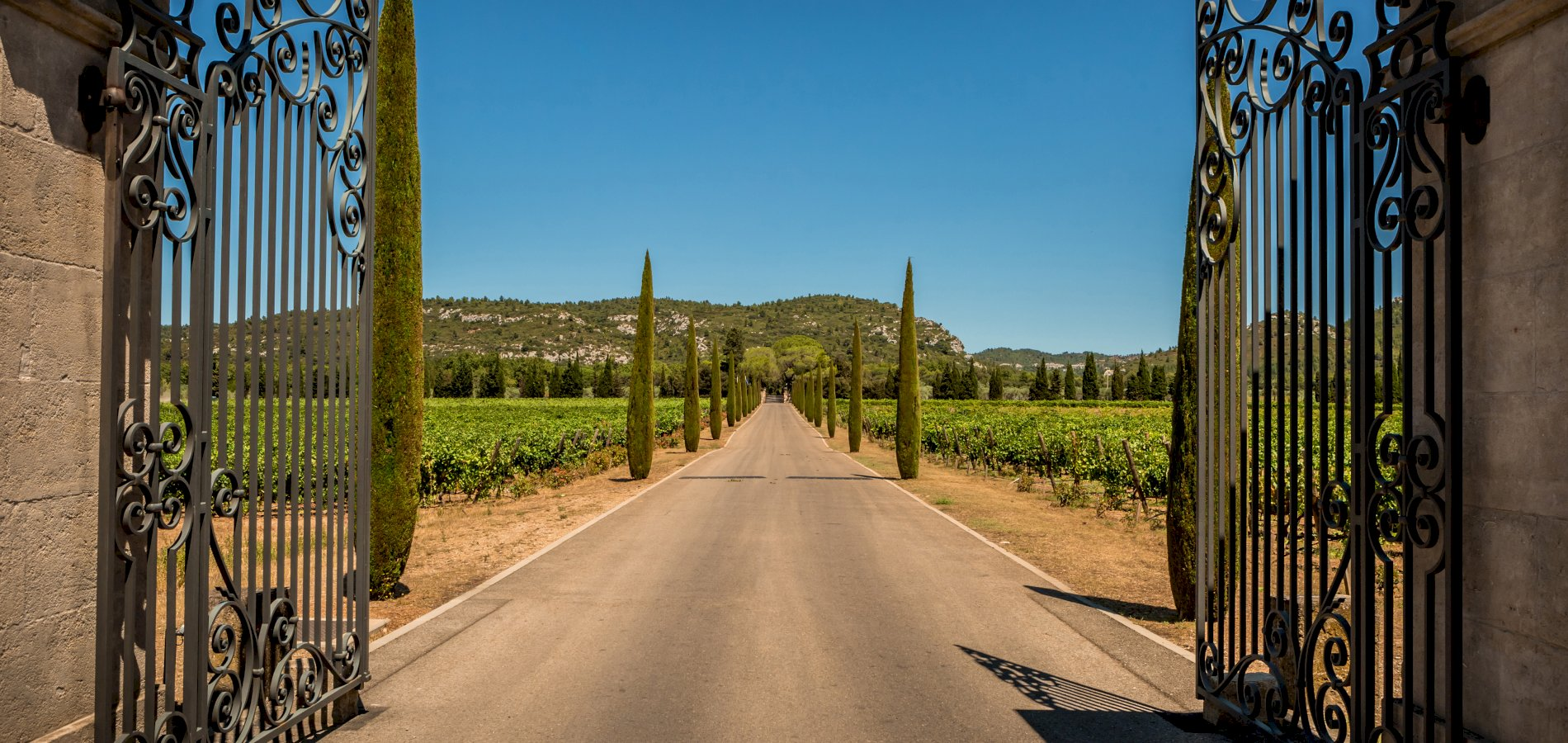 Ophorus Tours - French Riviera Private Provence Wine Tour Shore Excursion From Cannes