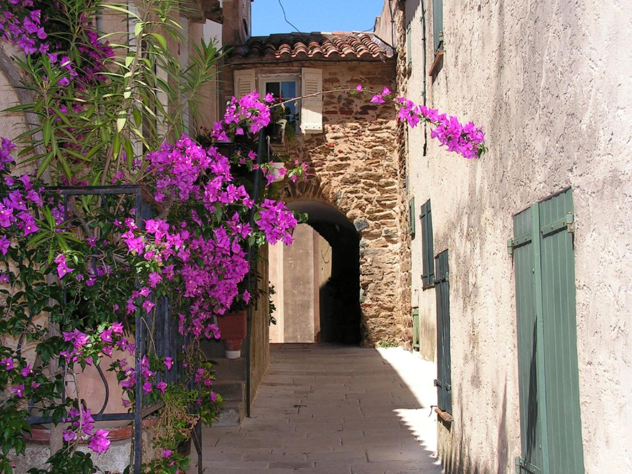 Ophorus Tours - Villages of Provence Private Full Day Shore Excursion From Toulon