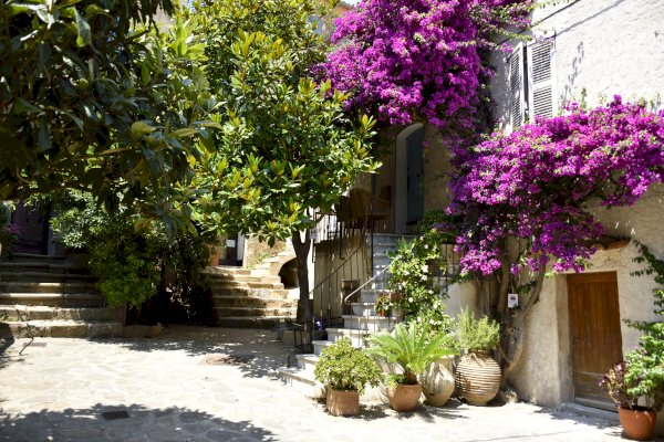 Ophorus Tours - Gassin & Ramatuelle Villages Private Shore Excursion From Saint Tropez