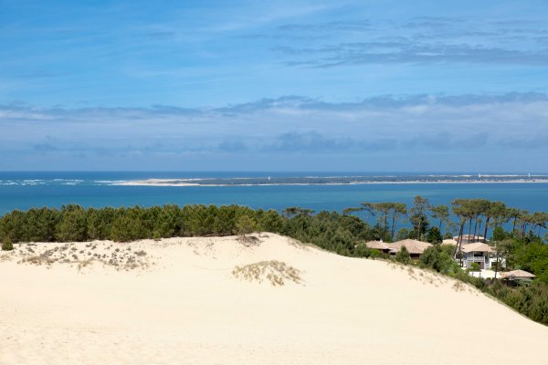 Ophorus Tours - Arcachon Bay & Pilat Sand Dune Private Day Trip From Bordeaux