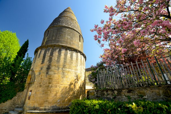 Ophorus Tours - From Bordeaux to Sarlat la Canéda Private Transfer