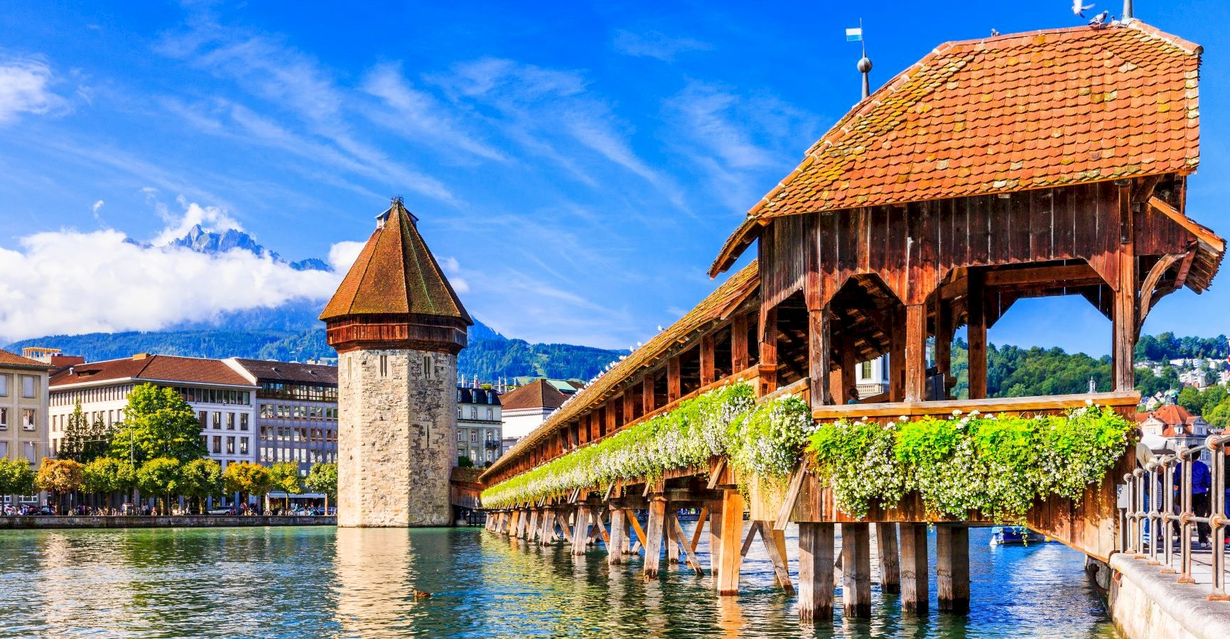 Ophorus Tours - From Colmar to Lucerne Private Transfer