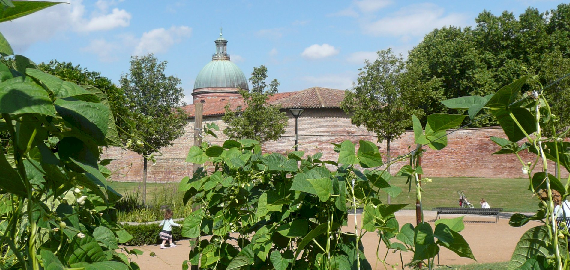 Ophorus Tours - From Sarlat la Canéda to Toulouse Private Sightseeing Transfer