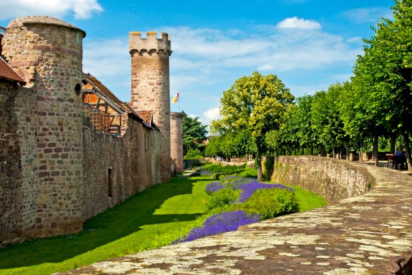Ophorus Tours - From Strasbourg to Obernai Private Transfer