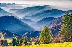 Ophorus Tours - Freiburg & The Black Forest Private Day Trip from Strasbourg for 2 persons