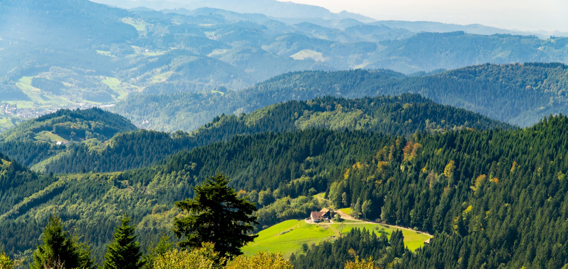 Ophorus Tours - Freiburg & The Black Forest Private Day Trip from Colmar for 2 persons