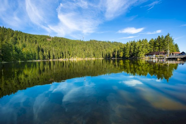 Ophorus Tours - Black Forest Shared Full Day Trip From Strasbourg