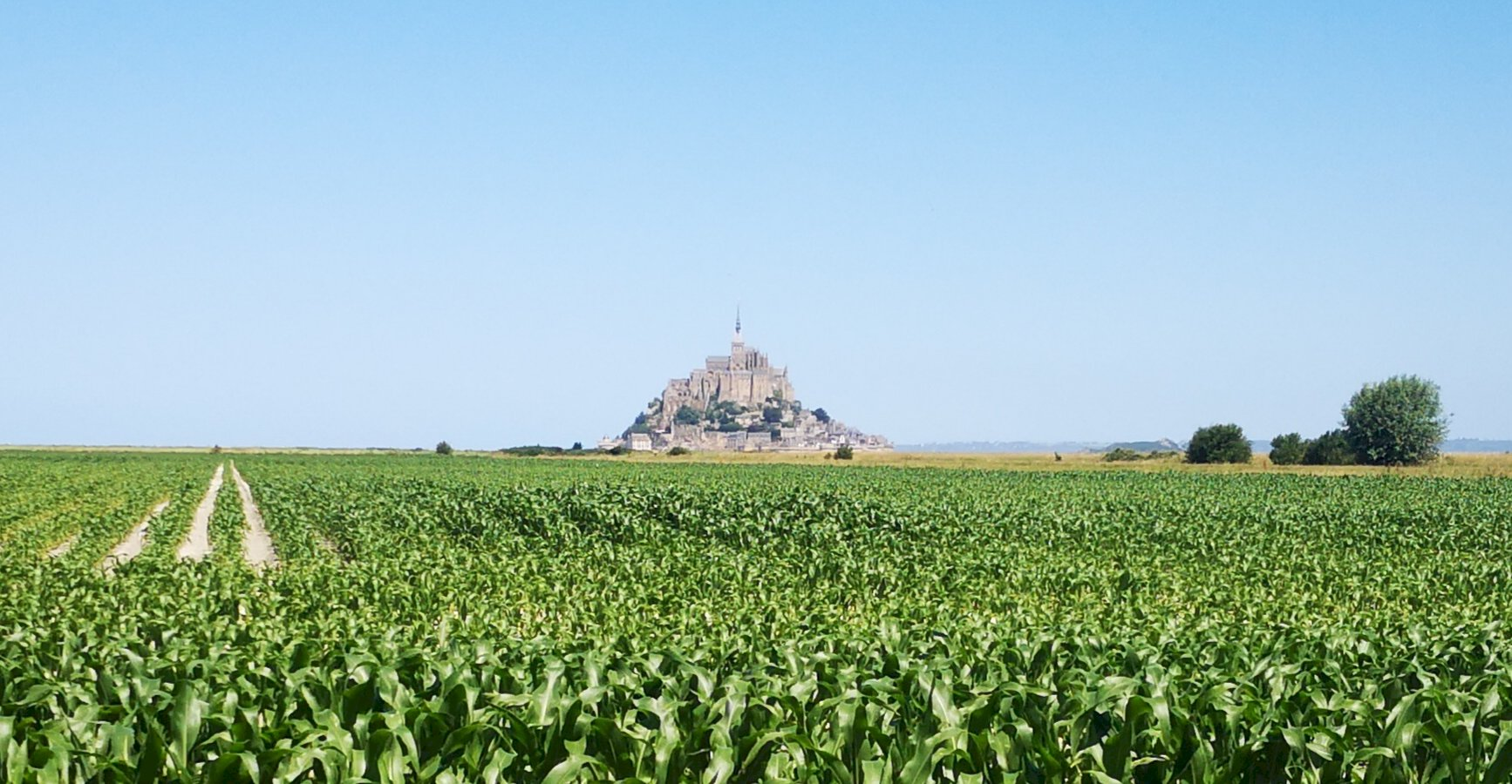 Ophorus Tours - Mont Saint Michel Private Day Trip From Caen
