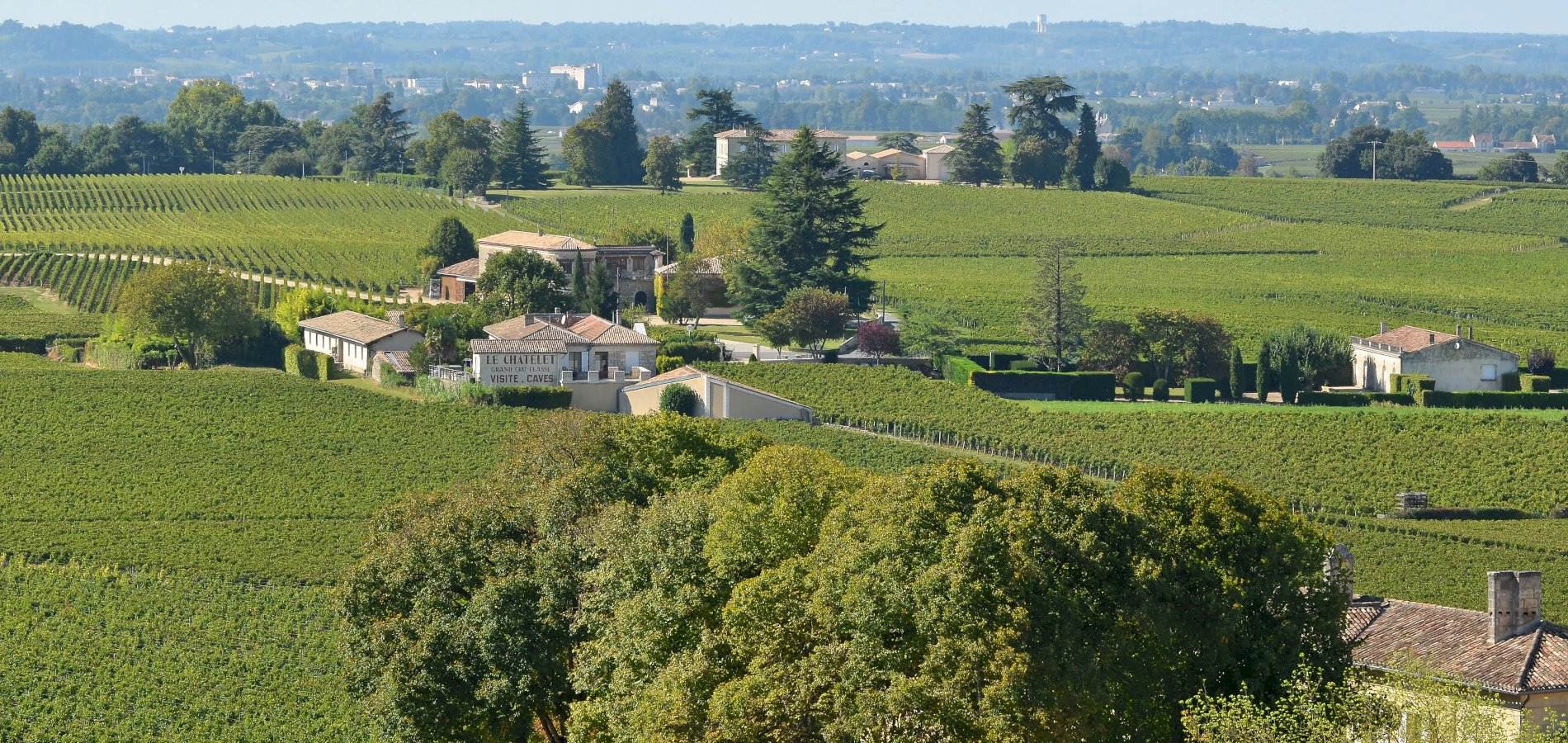 Ophorus Tours - Saint Emilion Wine Tour Small Group Private Full Day Trip from Saint Emilion