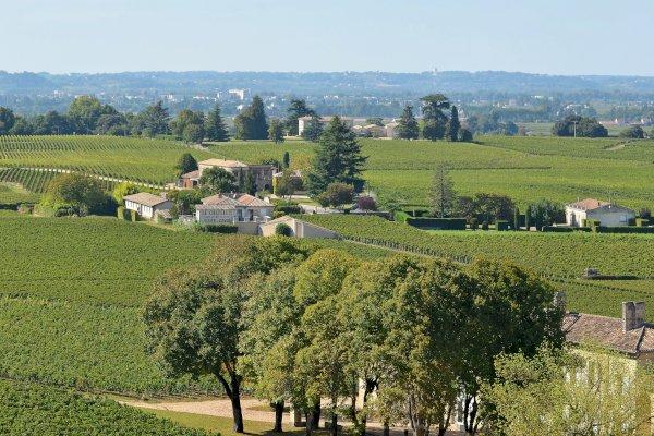 Ophorus Tours - Saint Emilion Wine Tour Small Group Private Full Day Trip from Saint Emilion