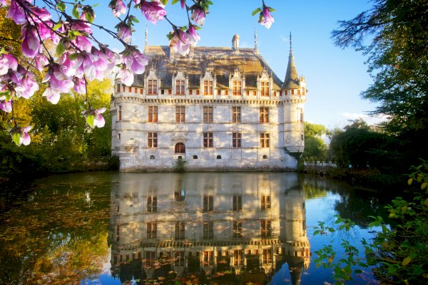Ophorus Tours - Loire Valley Day Tour: Chateaux of Azay Le Rideau, Langeais & Villandry, Organic Wine tasting