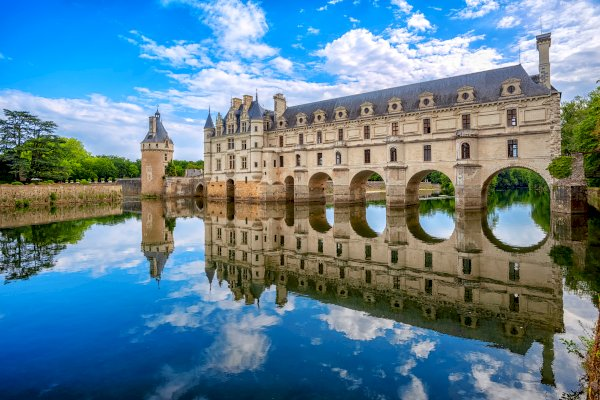 Ophorus Tours - Loire Valley Day Tour: Chateaux of Chenonceau, Amboise & Clos Luce, Wine tasting