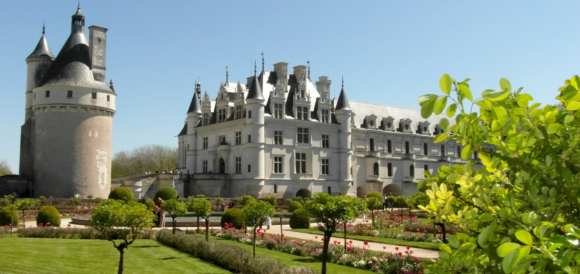 Ophorus Tours - Loire Valley Day Tour: Chateaux of Chenonceau & Chambord, Wine tasting