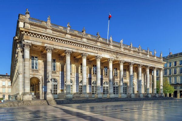 Ophorus Tours - Bordeaux Private Guided Walking Tour with licensed guide from Cruise Port