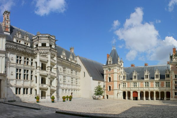 Ophorus Tours - Loire Valley Day Tour: Chateaux of Blois, Cheverny & Chambord, Organic Wine tasting