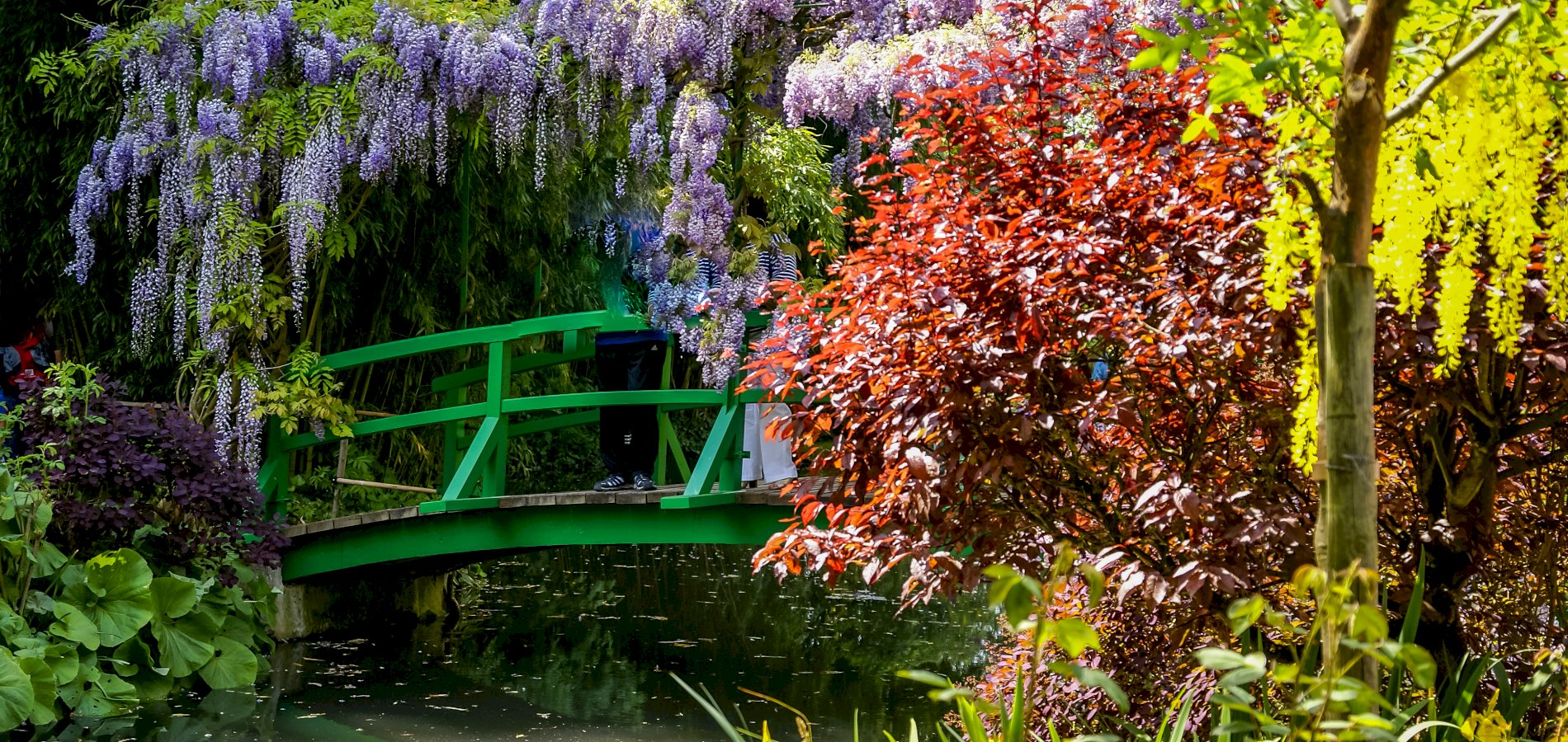 Ophorus Tours - Giverny and Monet's Garden Half-day trip from Paris in a Small-Group