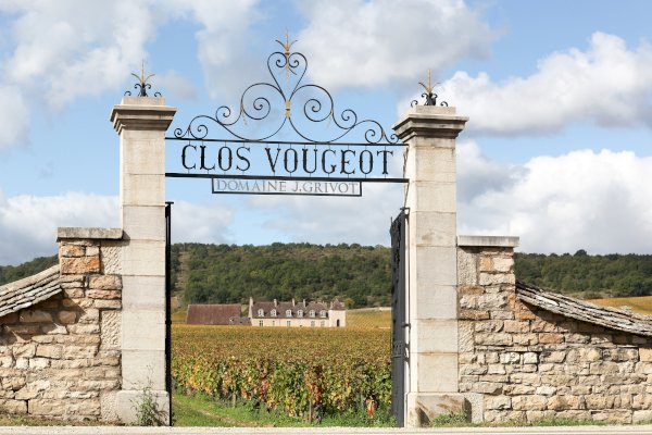 Ophorus Tours - Côte de Beaune Burgundy Wine Tour Private Day Trip From Beaune for 2 persons