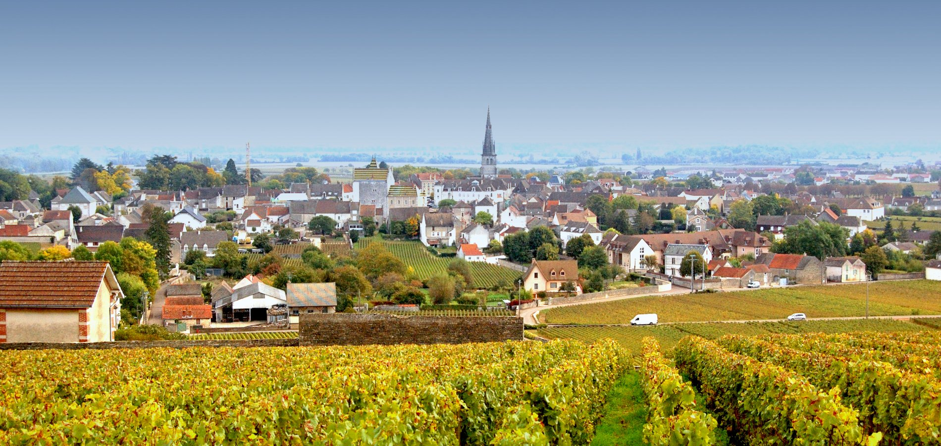 Ophorus Tours - Côte de Beaune Burgundy Wine Tour Private Day Trip From Dijon for 2 persons