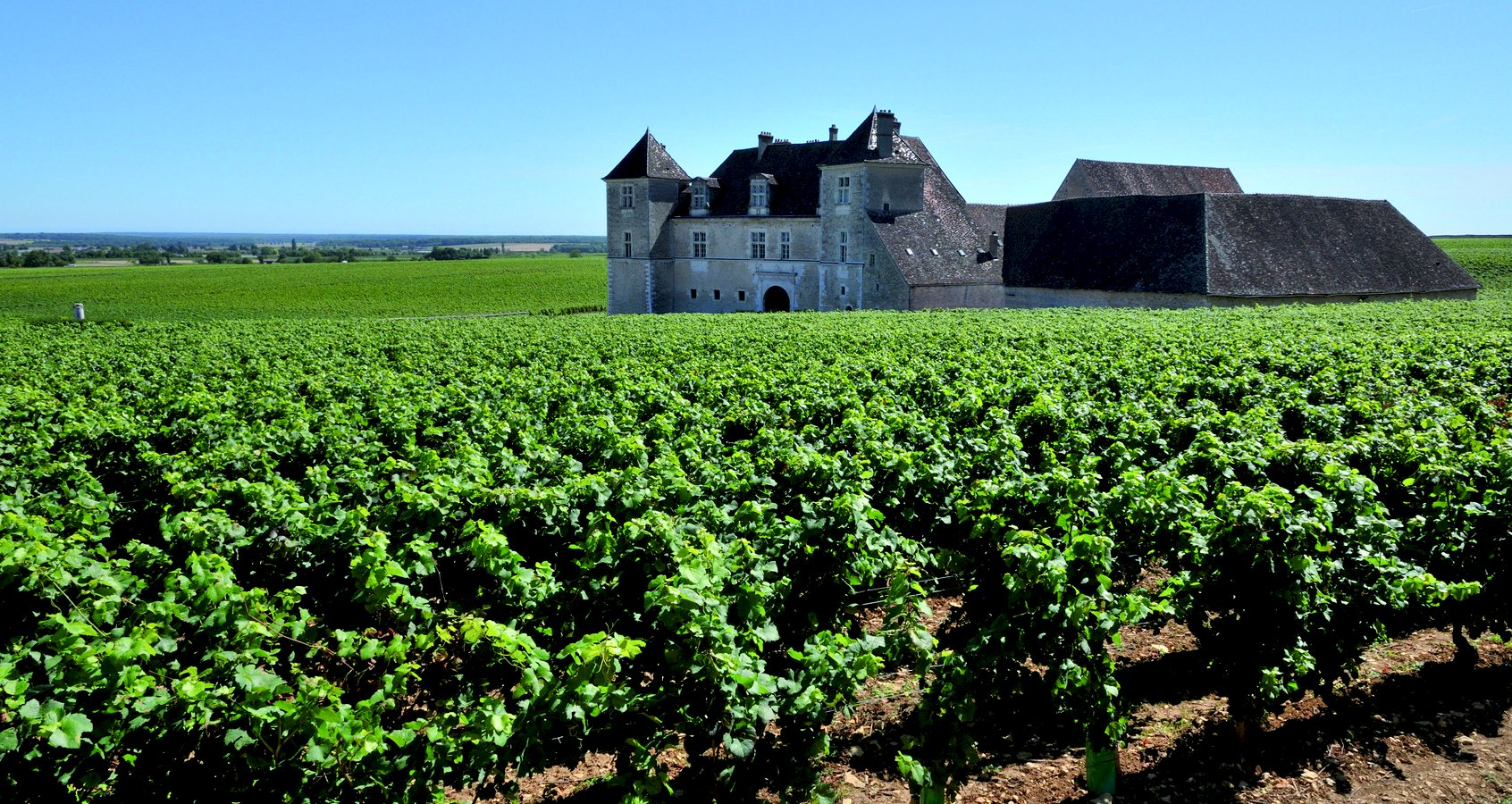 Ophorus Tours - Côte De Nuits Burgundy Wine Tour Private Day Trip From Dijon for 2 persons