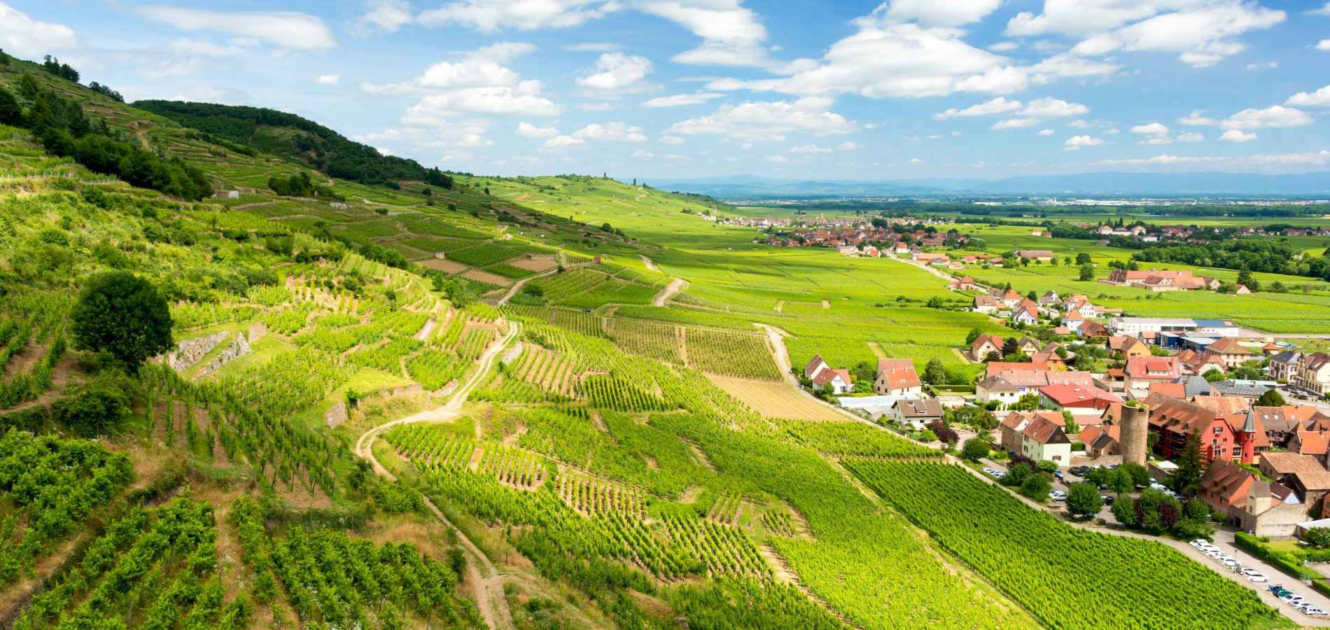 Ophorus Tours - Special Offer - 3 Days Alsace Small Group Shared Day Trips from Strasbourg