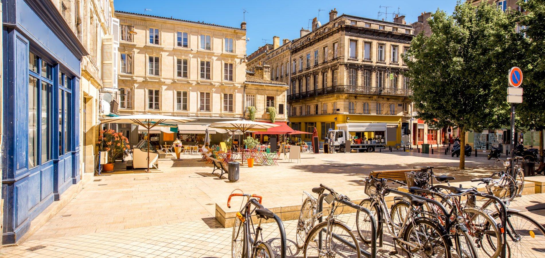 Ophorus Tours - Bordeaux Panoramic tour & Picnic at Chateau Winery Shore Excursion From Bordeaux