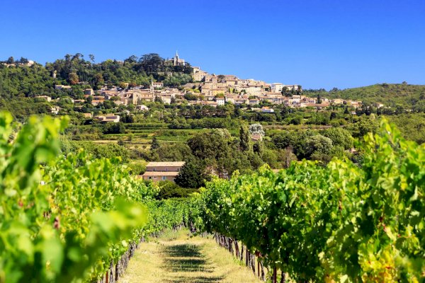 Ophorus Tours - Provence Wine Tour Shared Half Day Trip from Aix en Provence