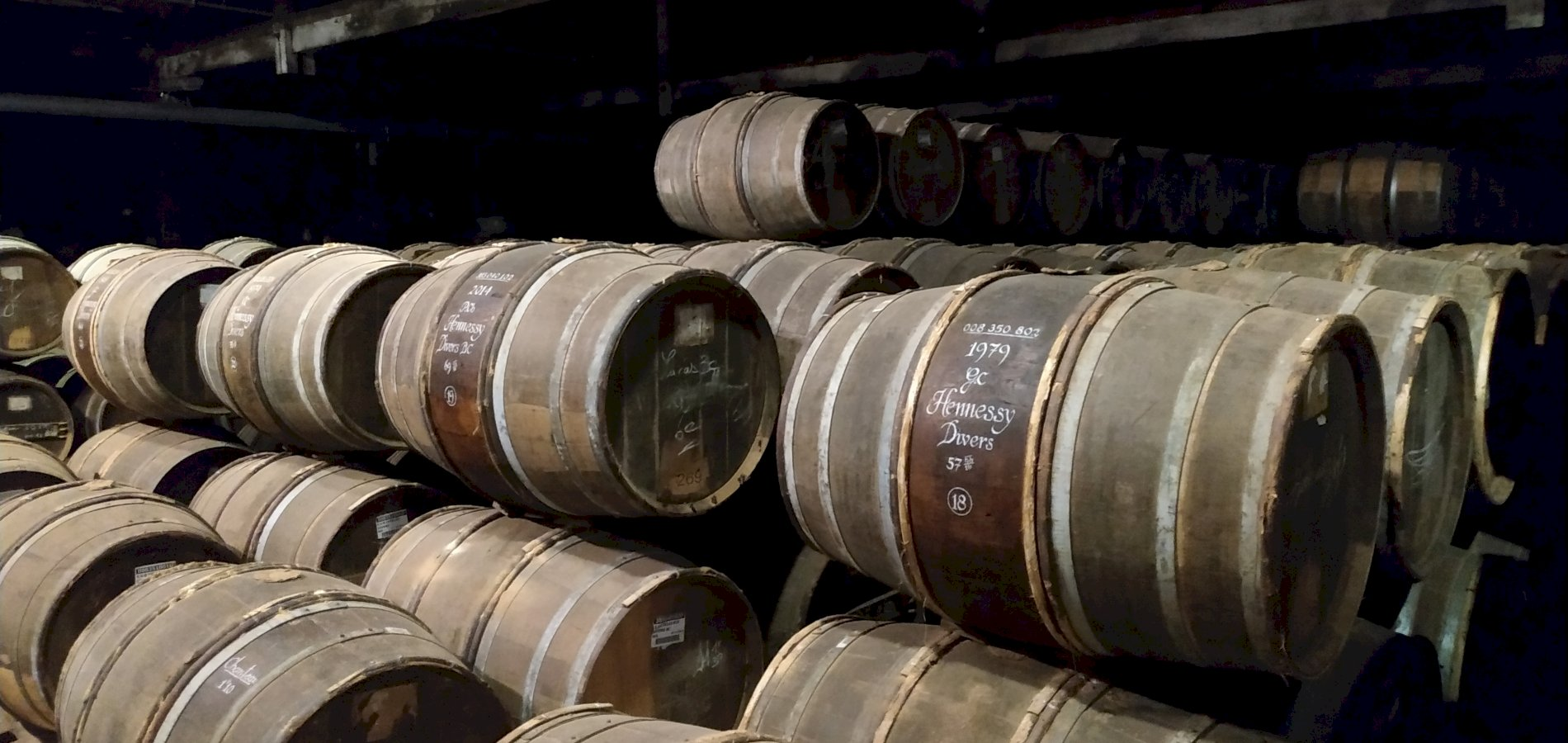 Ophorus Tours - Hennessy Cognac From Grape to Glass Visit & Experience