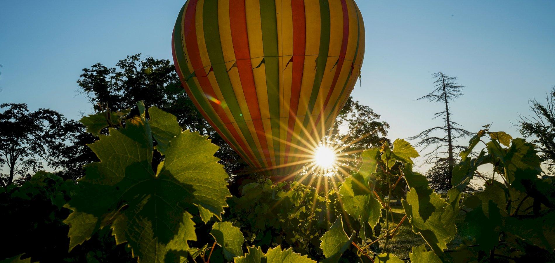 Ophorus Tours - Saint Emilion Wine Region Shared Hot Air Balloon Flight