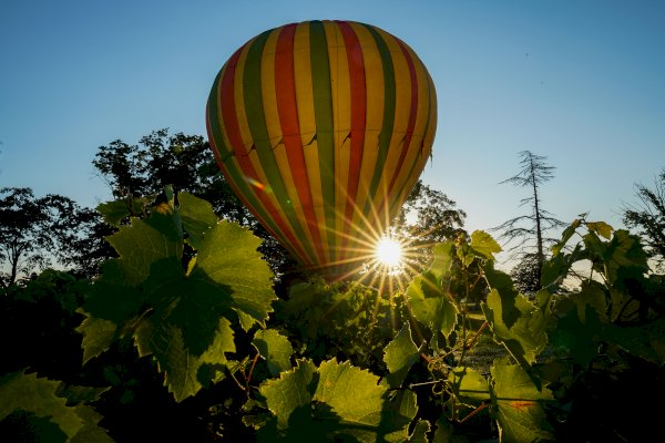 Ophorus Tours - Saint Emilion Wine Region Shared Hot Air Balloon Flight