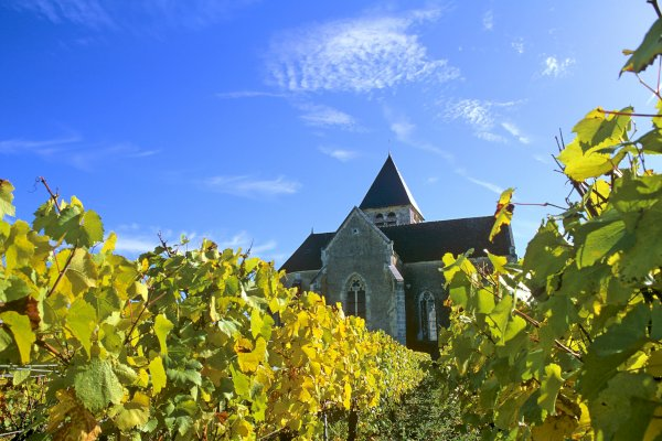 Ophorus Tours - Burgundy Private Full Day Trip From Paris