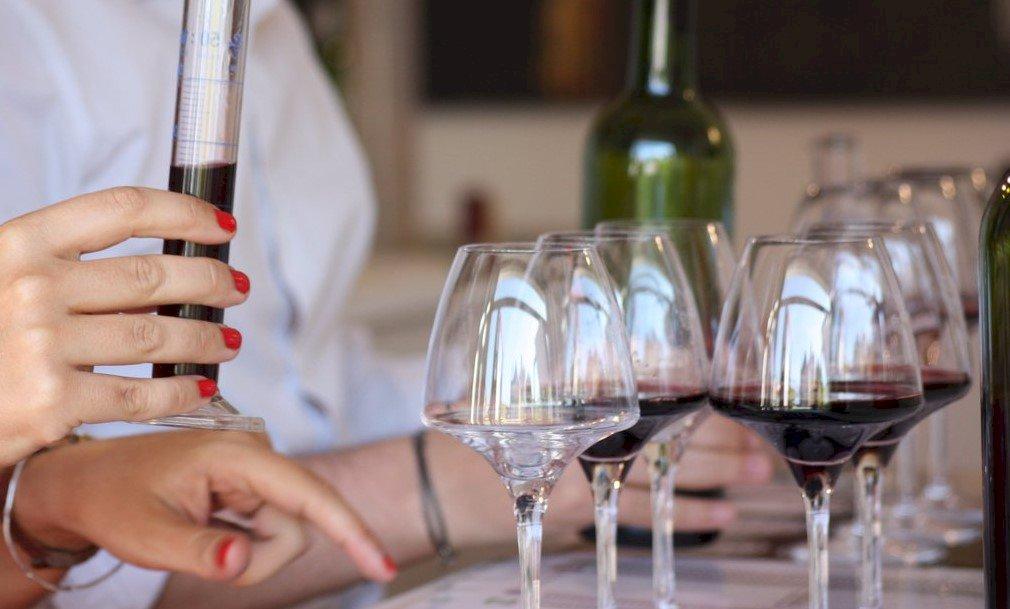 Ophorus Tours - Wine Tasting Experiences in the Medoc private day trip from Bordeaux