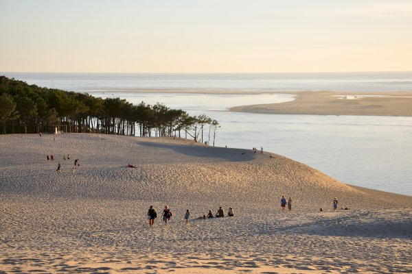 Ophorus Tours - Arcachon Bay & Pilat Dune Small Group Private Shore Excursion From Bordeaux